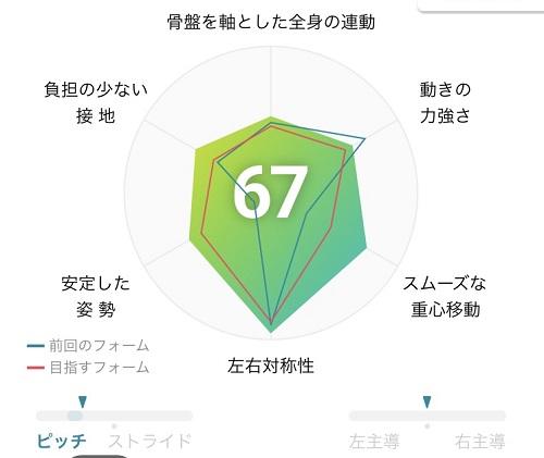 プーマレーダーチャート