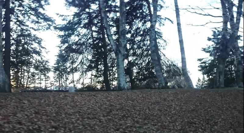 緑ヶ丘公園の画像